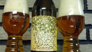 Dogfish Head-Sierra Nevada Life and Limb Rhizing Bines in the new IPA glass